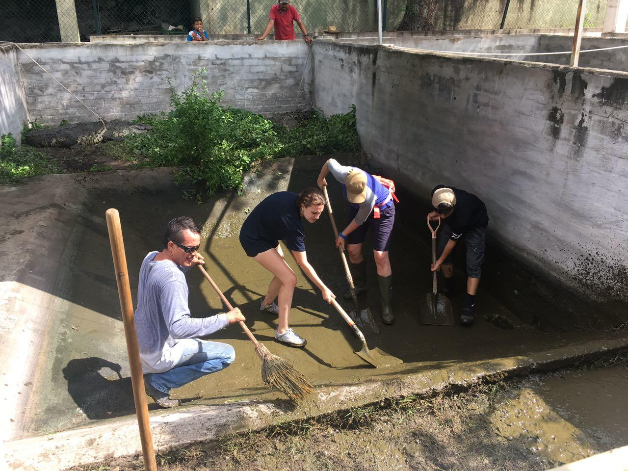 A group cleans a crocodile enclosure for their conservation volunteering in Mexico.
